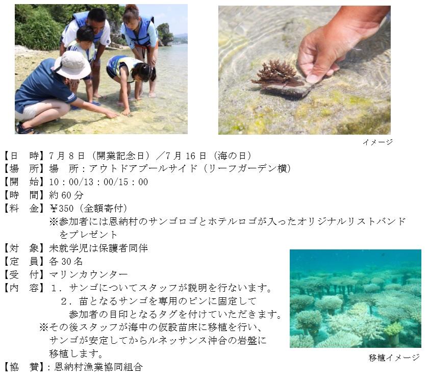 ルネッサンスリゾートオキナワ  サンゴの植え付け体験